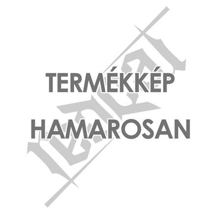 Safer Life fényvisszaverő kutyakendő L–XL